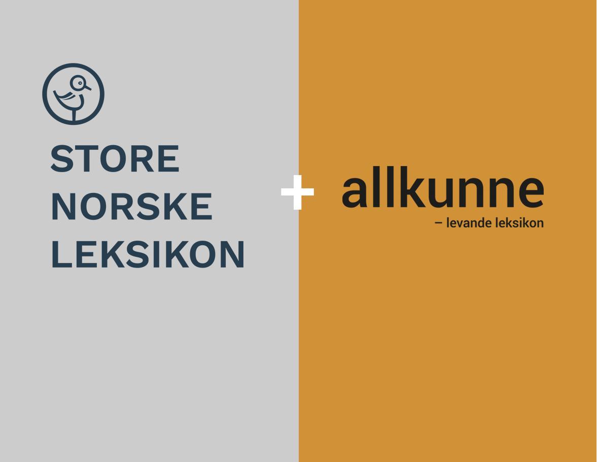 Illustrasjon Store norske leksikon pluss Allkunne